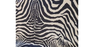Största bädden med motiv Zebra
